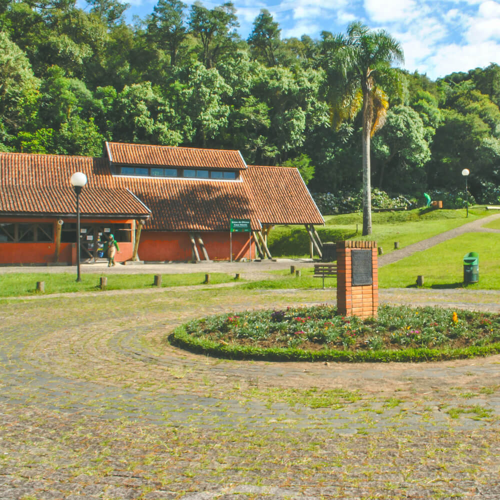 09 De Dezembro: Inauguração Do Bosque Fazendinha
