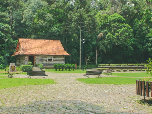 Bosque Do Papa (Bosque Estadual João Paulo II)