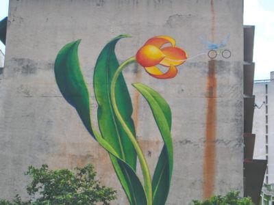 Arte Para O III Fórum Mundial Da Bicicleta – Mona Caron
